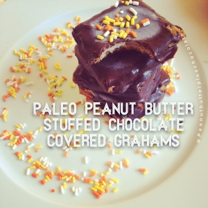 Chocolate Covered Grahams stuffed with peanut butter!